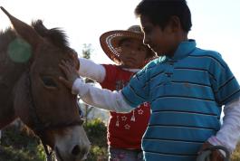 Niños de escuela autónoma en Lachatao, sierra de Juárez, Oaxaca.